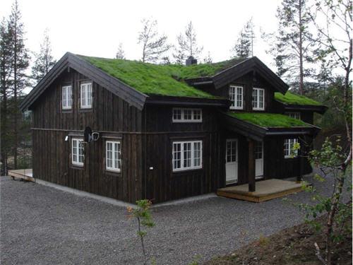 22 Строительство домов Норвегия  YouTube